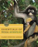 Essentials of Physical Anthropology 2nd Edition